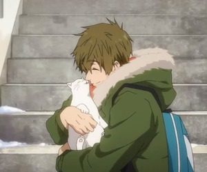 free!, anime, and cat image