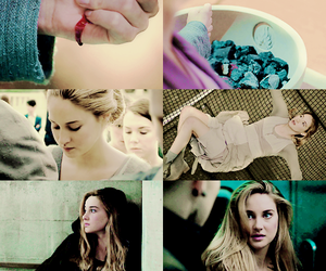 divergent and Shailene Woodley image