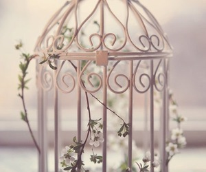 flowers, cage, and vintage image
