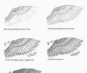 wings and draw image