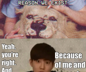 exo, funny, and lol image