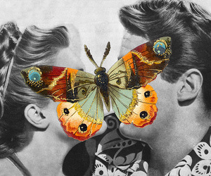 butterfly, kiss, and Collage image