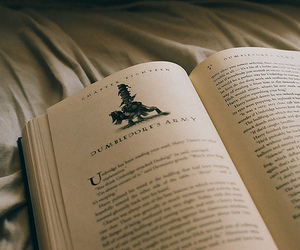 book, harry potter, and dumbledore's army image