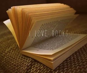 book, indie, and love image