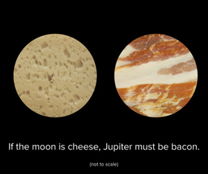 funny, bacon, and moon image