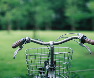 bike, green, and photography image