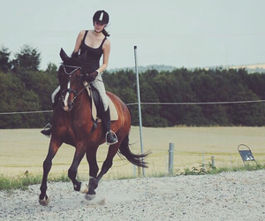 feel, free, and horse image