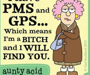 bitch, funny, and gps image