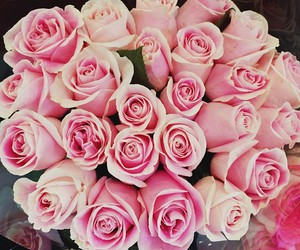 rose, pink, and chanel image