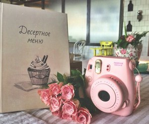 flowers, pink, and instax image