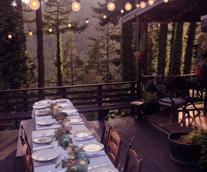 dinner and forest image