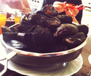 clams and food image