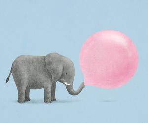 elephant, pink, and animal image