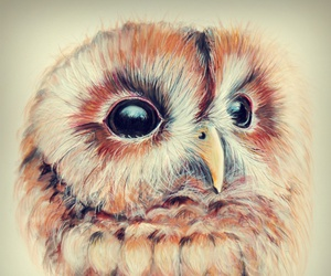 art, drawing, and so cute image