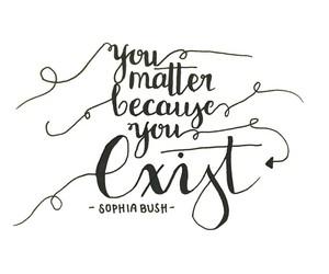 quotes and sophia bush image