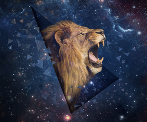 lion, space, and wallpaper image
