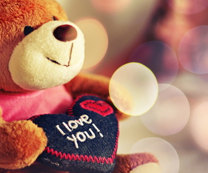 bear, color, and Valentine Day image