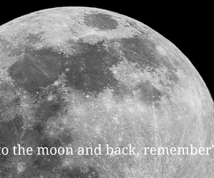 lie, to the moon and back, and why did you leave me? image