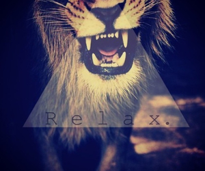 lion and relax image