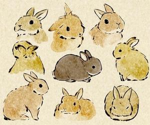 Animales, conejos, and dibujos image