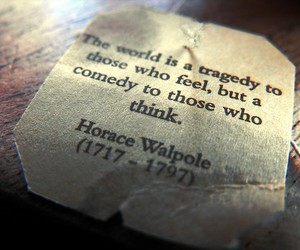 quote, tragedy, and comedy image