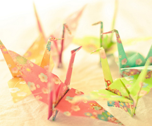origami, crane, and bird image