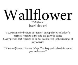 wallflower, quotes, and definition image