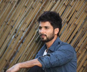 bollywood and shahid kapoor image