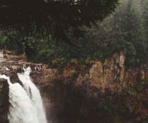 forest, waterfall, and grunge image