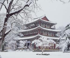 white, snow, and south korea image