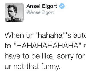 funny, ansel elgort, and twitter image