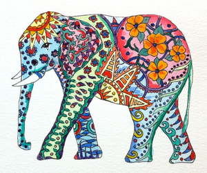 cool, elephant, and tumblr image