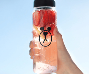 strawberry, water, and bear image