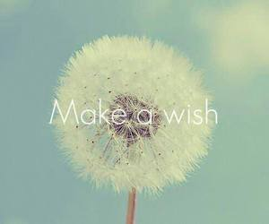wish and be happy image