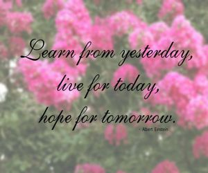 quote, hope, and learn image