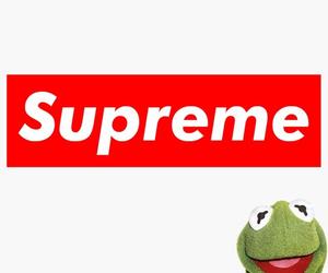 supreme and kermitthefrog image