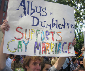 dumbledore, gay marriage, and harry potter image