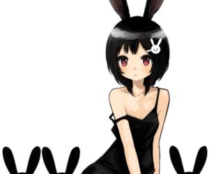 bunny, girl, and bunny girl image