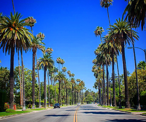 Beverly Hills, california, and enjoy image