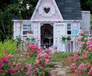 baby pink, flower, and garden image