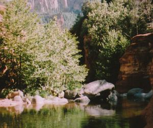 nature, indie, and vintage image