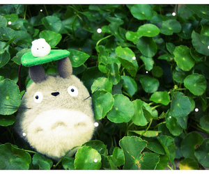 leaves, plush, and tonari no totoro image