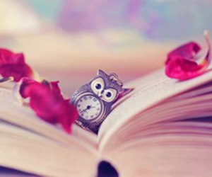 book, owl, and clock image