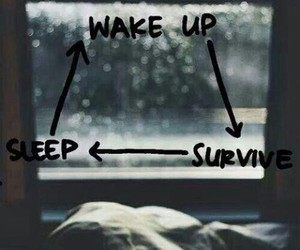 sleep, survive, and wake up image