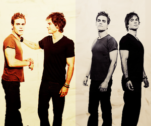 brothers, damon, and stefan image