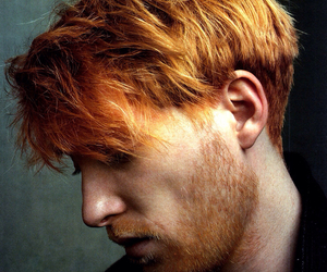 domhnall gleeson, actor, and ginger image