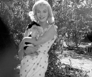Marilyn Monroe and dog image