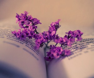 book, books, and flores image