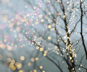light, tree, and winter image