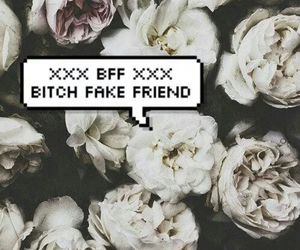bitch, fake, and flowers image